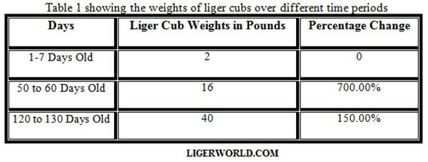 Liger Cubs Weight Percentage and Growth Chart.