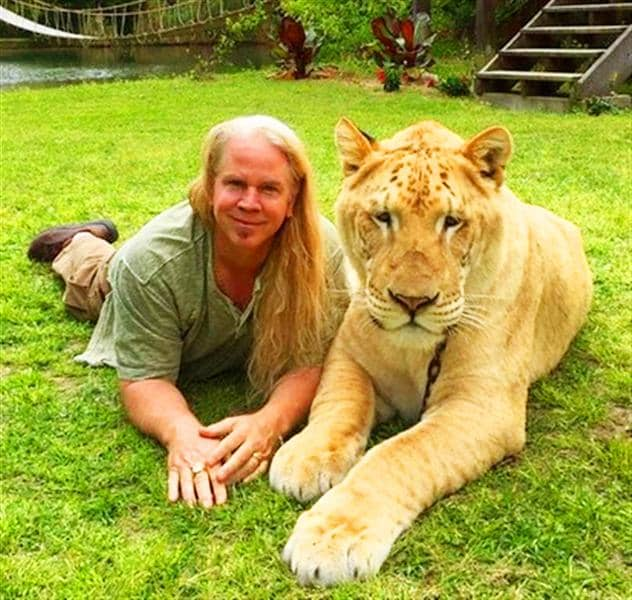 Ligers are healthy and live normally - Dr. Bhagavan Antle