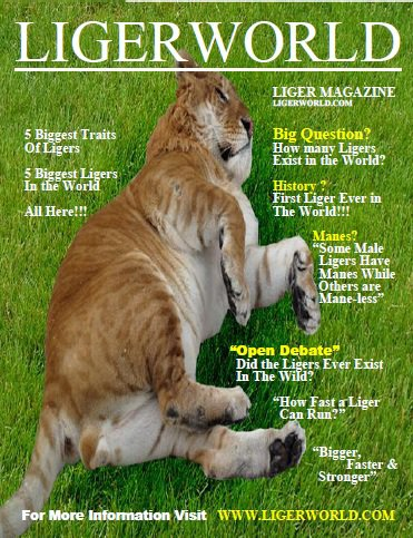 Liger Magazine Cover Page.