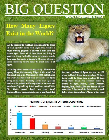 Ligers in the World. Ligers Population. How many ligers are in the world.
