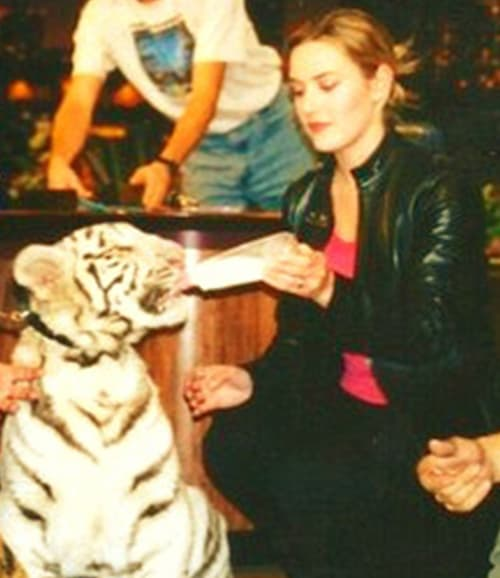 Kate Winslet with Tigers in 1999 at THe Tonight Show with Jay Leno.