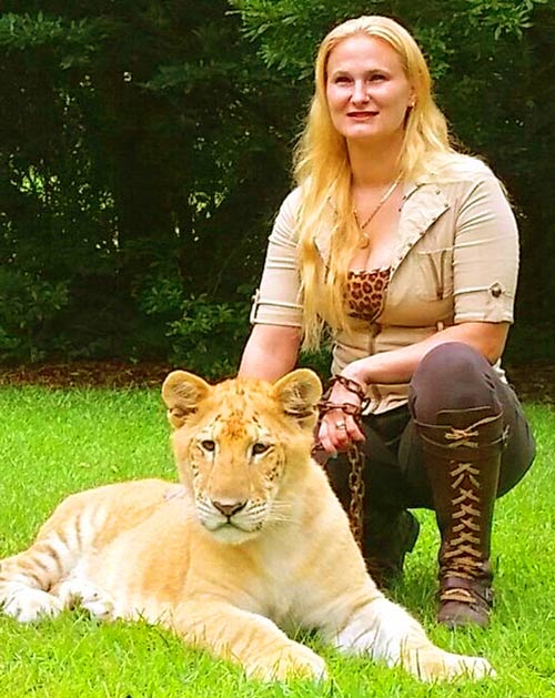 China York is a Liger Expert at Myrtle Beach Safari, South Carolina, USA.