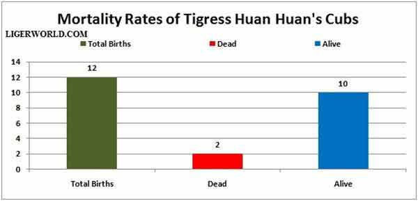 Liger Cubs Mortality Rates.