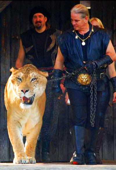 Hercules the liger with its caretakers such as Dr. Bhagavan Antle, Chris Heidin and China York.