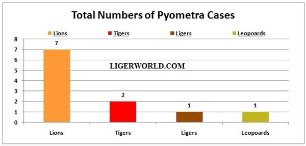 Ligers and Pyometra Cases.