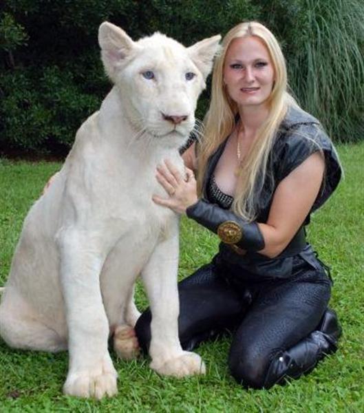 White Ligers And Tigons